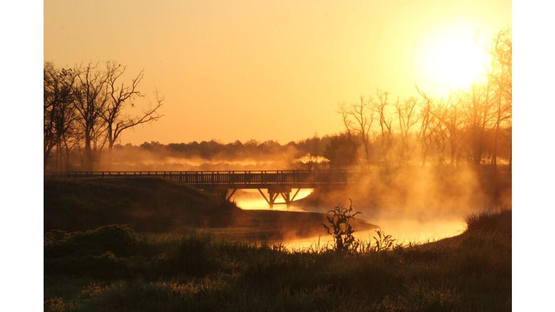 Le Teich, lever de soleil
