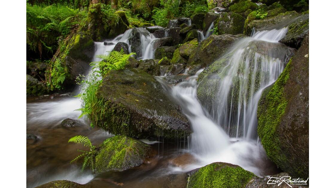 Cantal, ses cascades & paysages