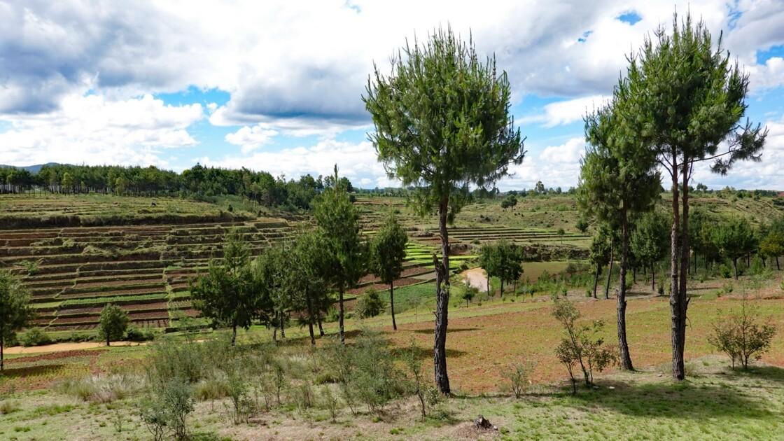 Madagascar Entre Antsirabe et Ambatolampy 1