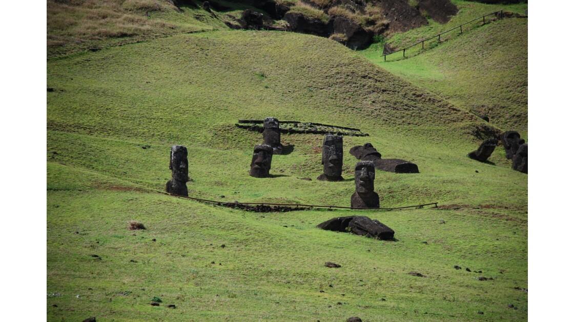 Moai lève toi