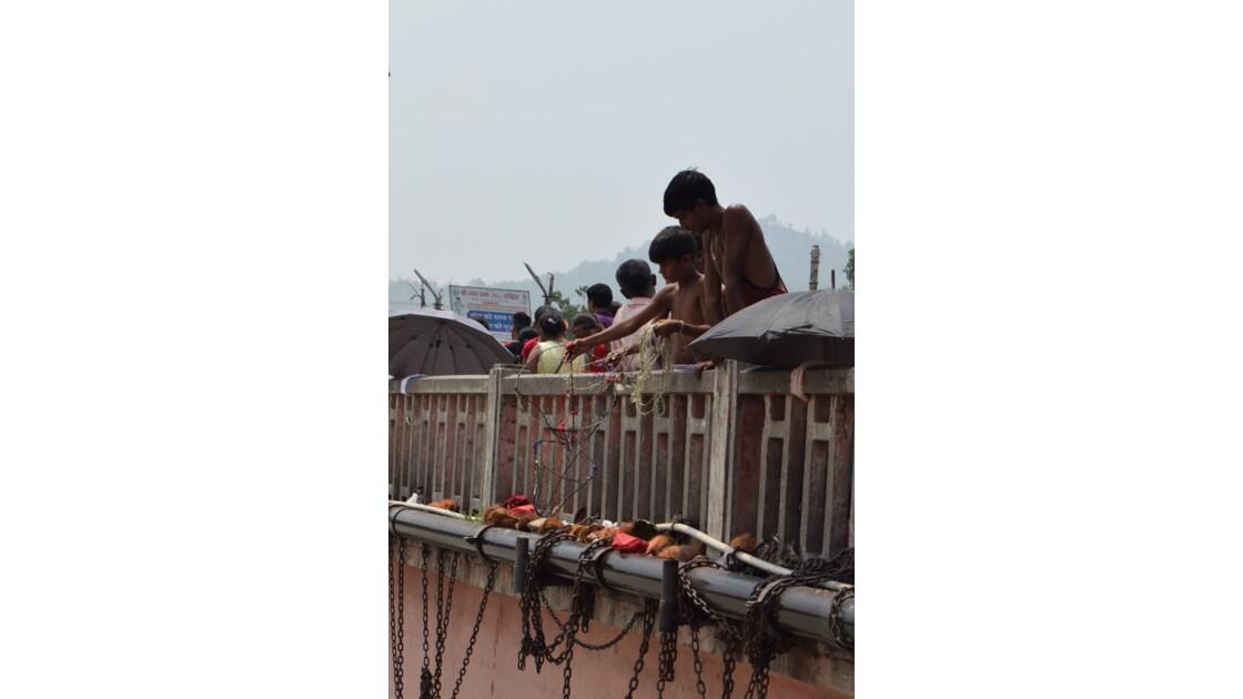 Les contreforts de l'Himalaya: Haridwar