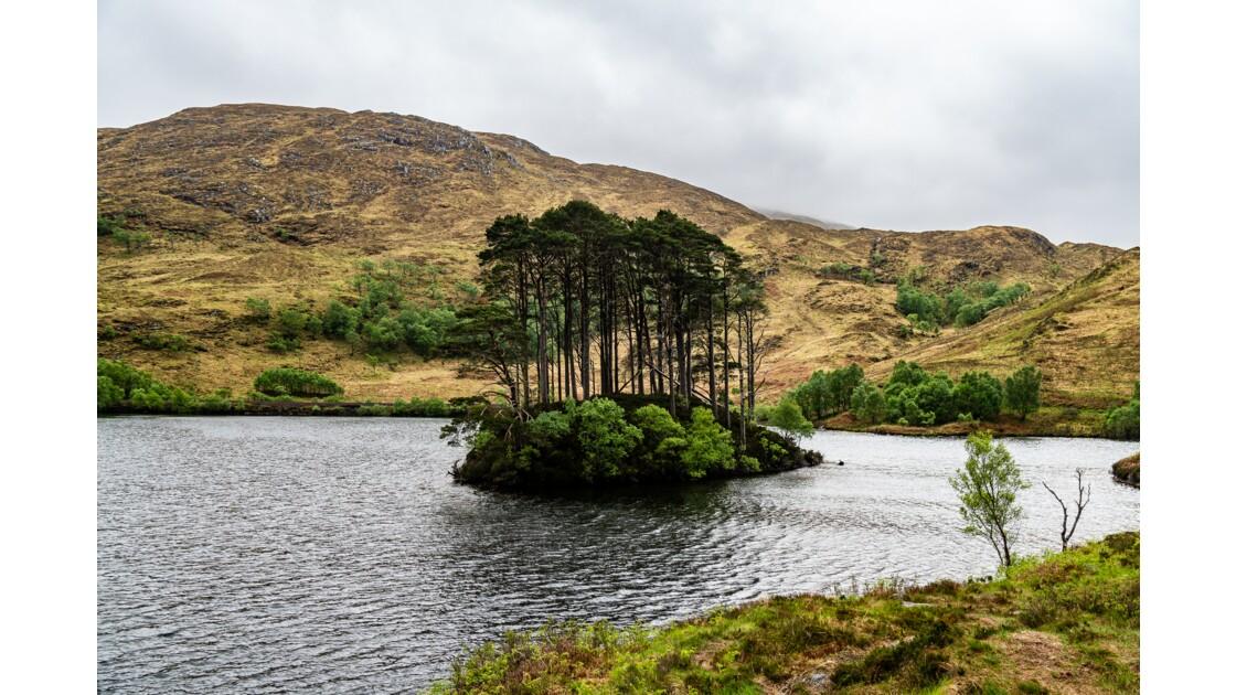 Eilean na Moine - Loch Eilt -A830