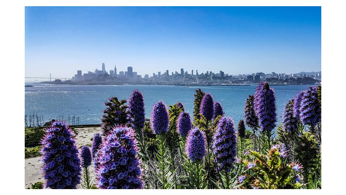 Vue sur San Francisco depuis Alcatraz
