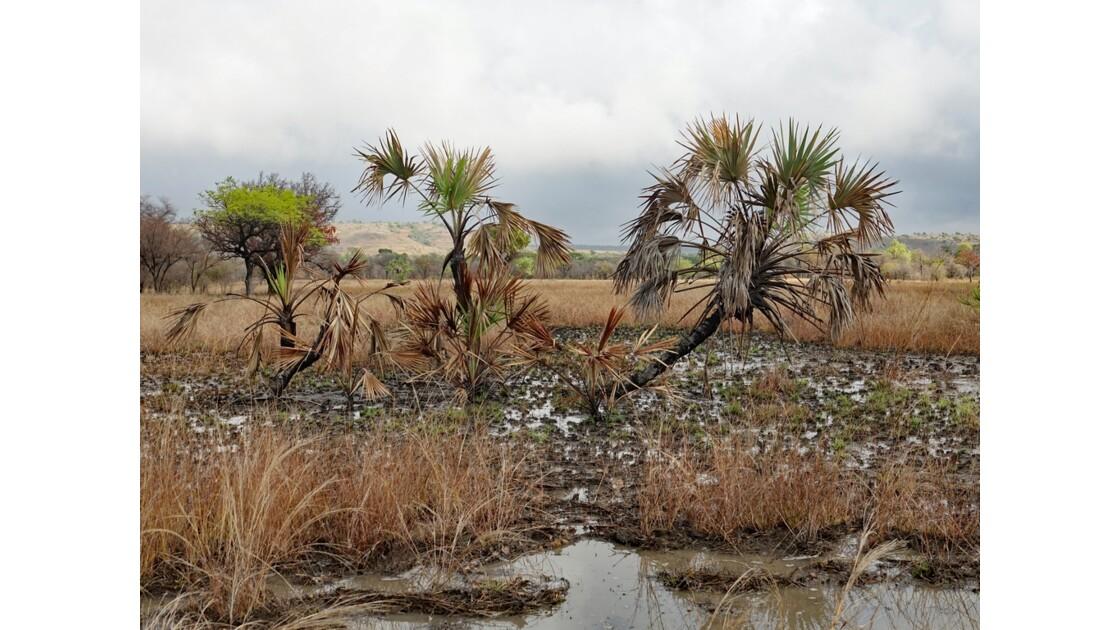 Madagascar Piste de Manja à Bevoay 2