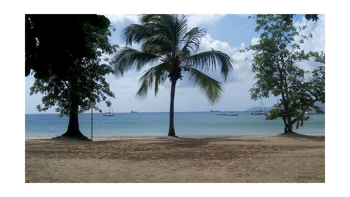 Martinique mon rêve éveillé