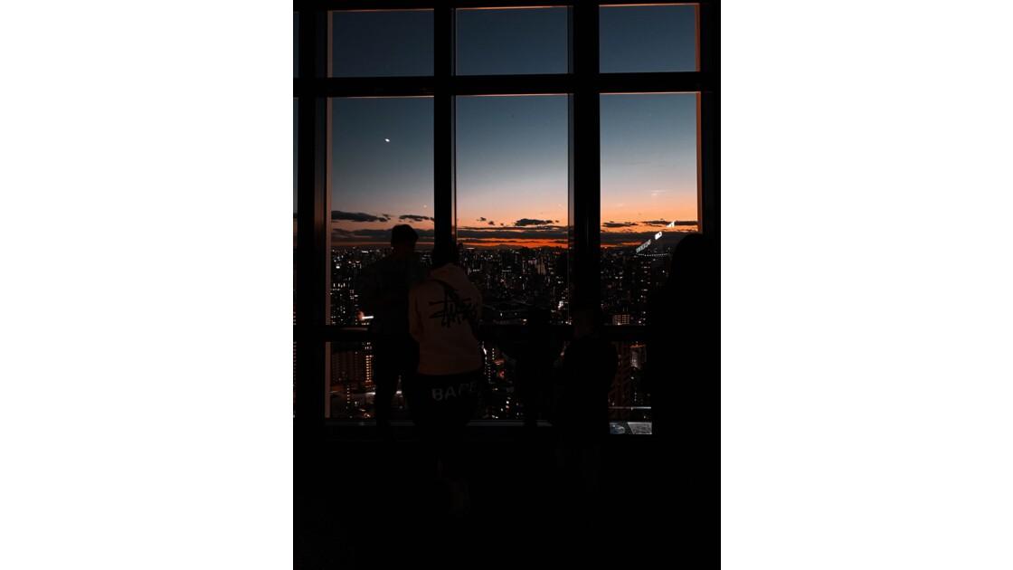 Tokyo falls asleep, full of shades.