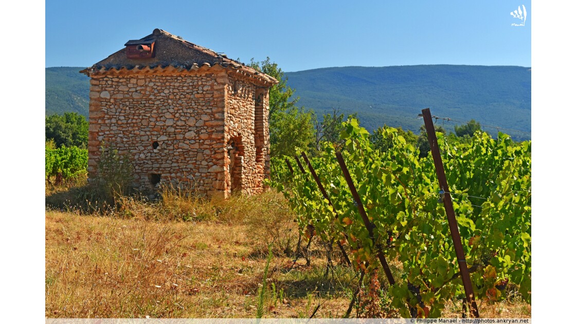 Cabanon dans les vignes, Villars