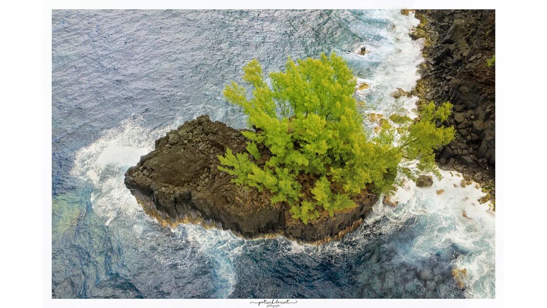 Roche Pas de Cabris - Île de la Réunion