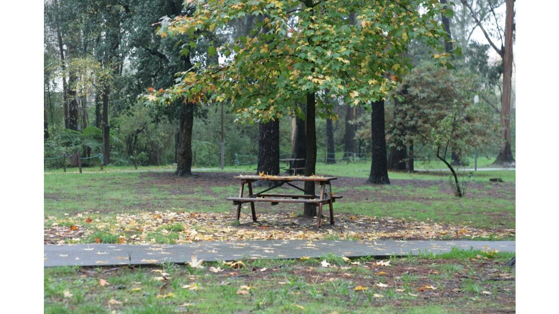 Parc du Carriçal