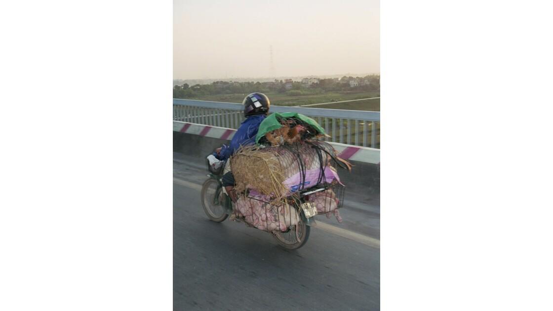 transport  équirentable!!