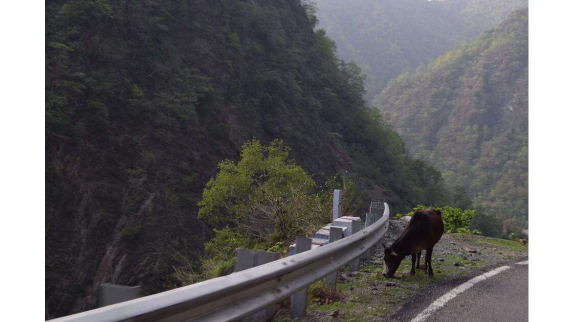 En route pour l'Himalaya: un peu d'altitude et de sacré
