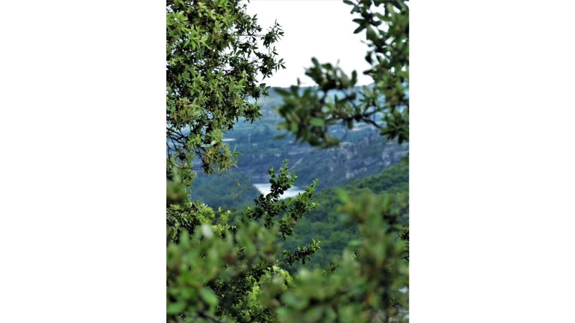 Ardèche sauvage