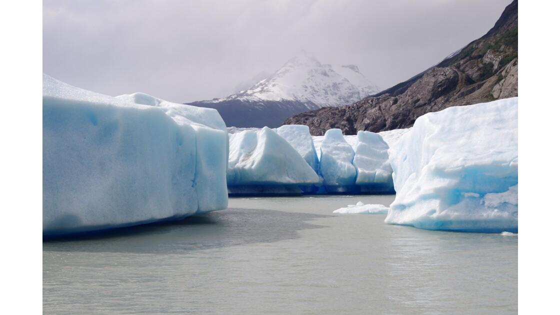 Iceberg du glacier Grey