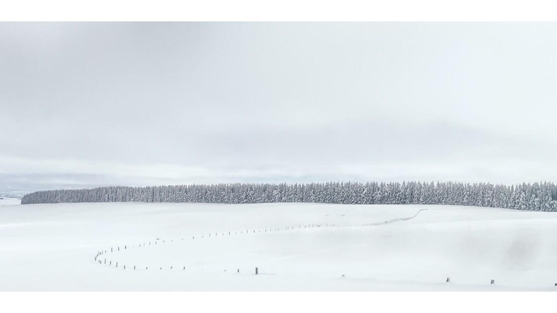 L'Aubrac en hiver