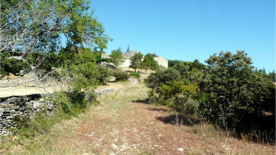 Randonnée autour de Buoux