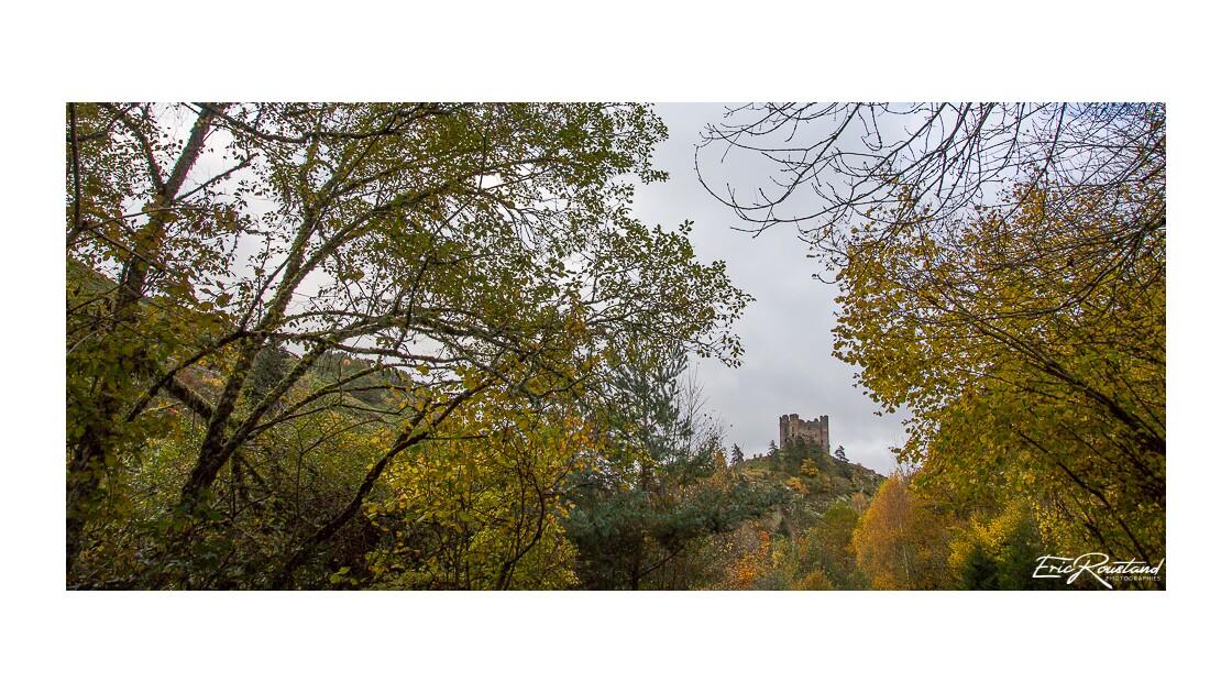 Chateau d'Alleuze 15