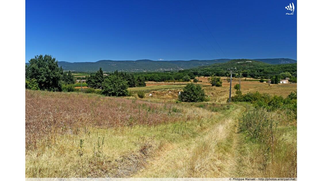 Traversée de champs (Luberon)