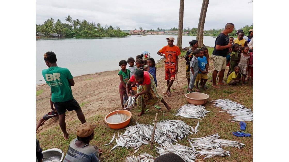 Madagascar Canal des Pangalanes Retour de pêche 2