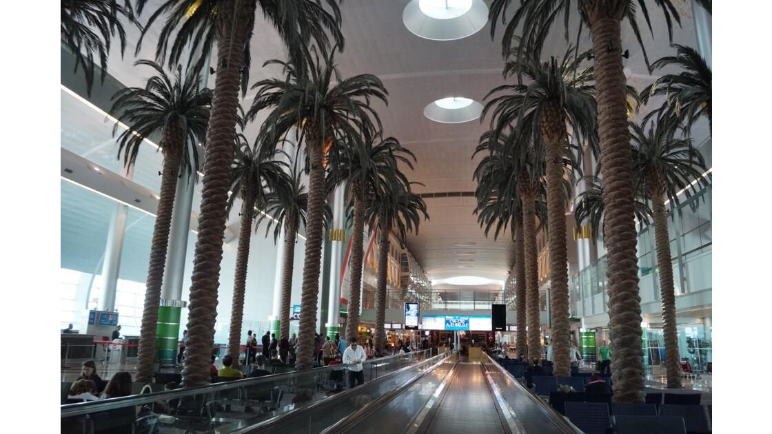 Dubai DNB
