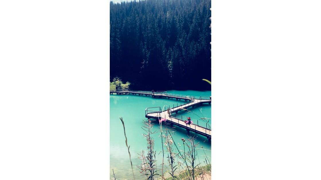 Lac de la Rosière en été
