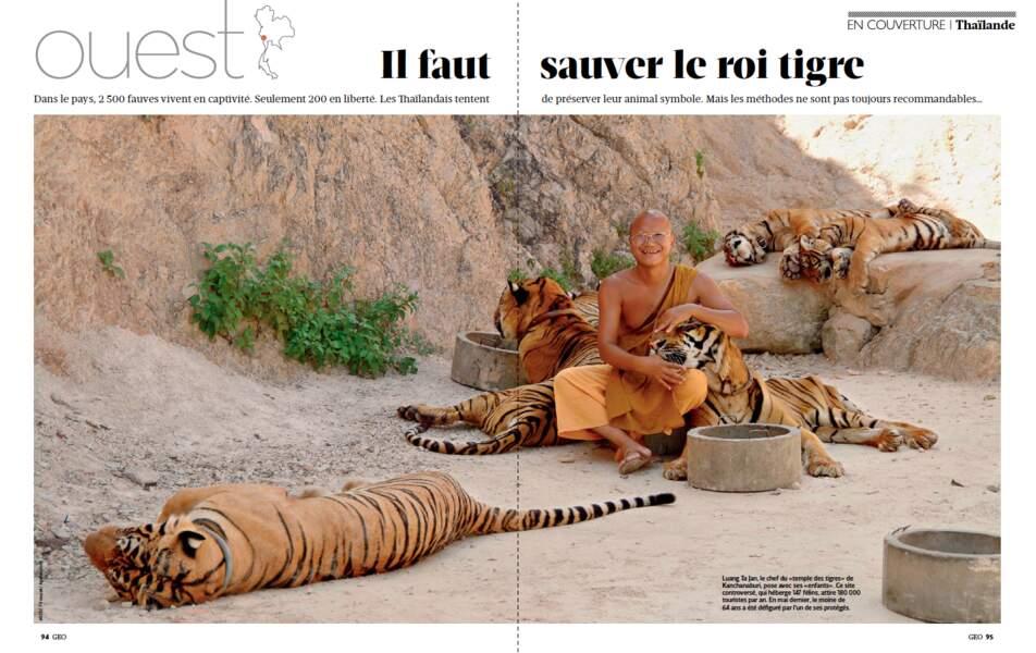 Grand dossier Thaïlande / Ouest : il faut sauver le roi tigre
