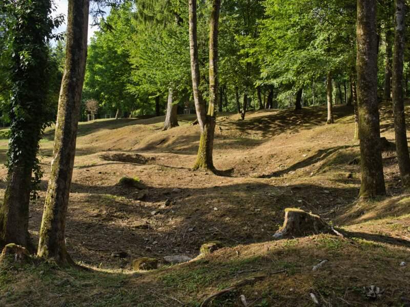 Aux portes de Verdun
