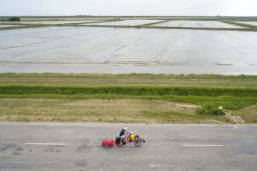 """Le """"riz de Camargue"""", une indication géographique protégée"""