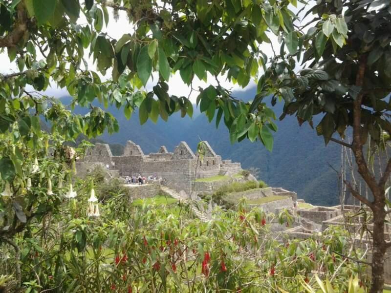 Le mythique Machu Picchu, au Pérou