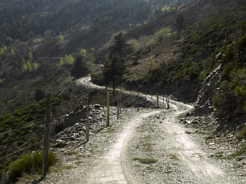 Col de la Croix de Berthel près de Saint-Maurice-de-Ventalon sur la D998