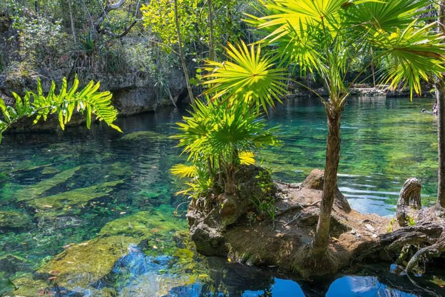 2e spot : les cavernes des Cénotes au Mexique