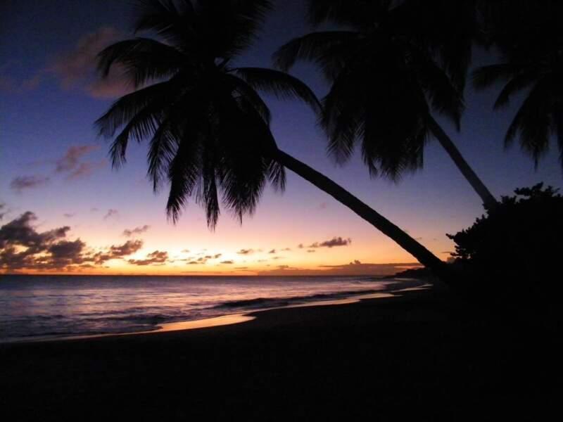 Photo prise par Aurélien Roussel Guillou aux Salines, en Martinique