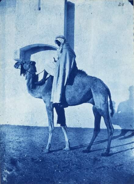 Algérie : cavalier du Makhzen d'El Goléa, 1888-1889
