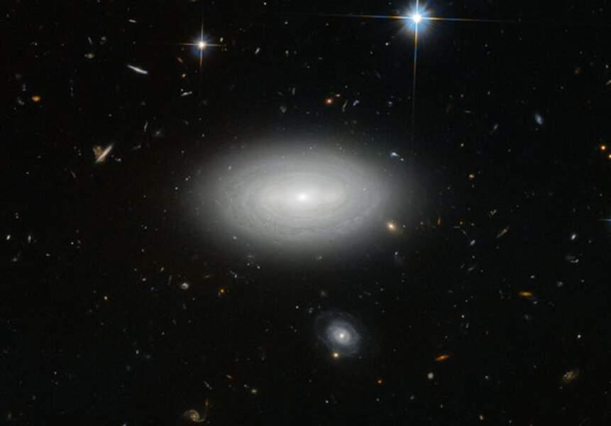 Seule dans l'univers (ou presque)