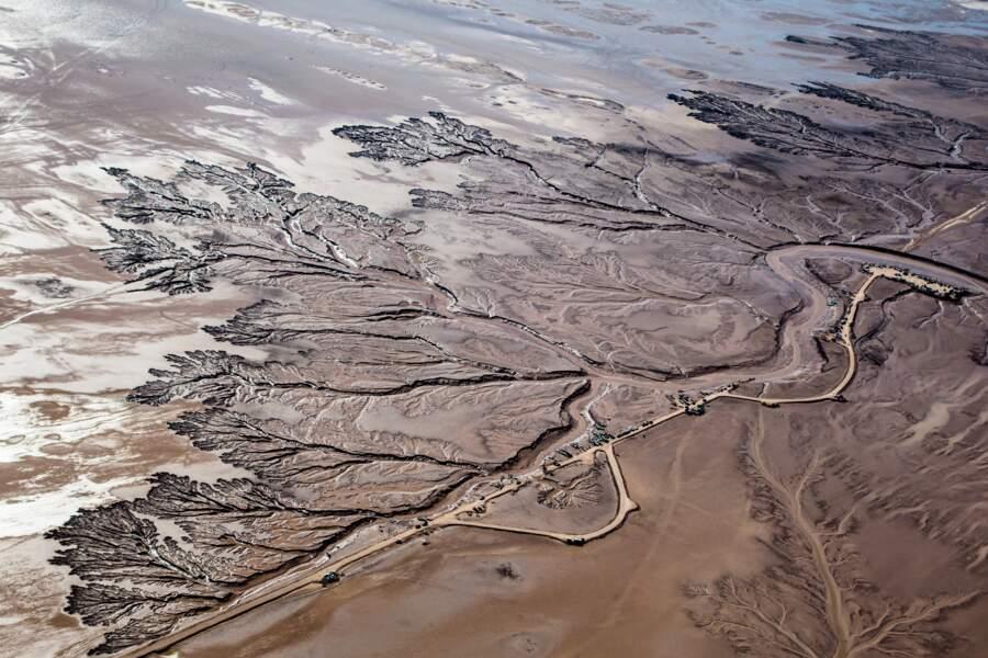 Le Nil de l'Occident n'arrive plus à rallier son estuaire
