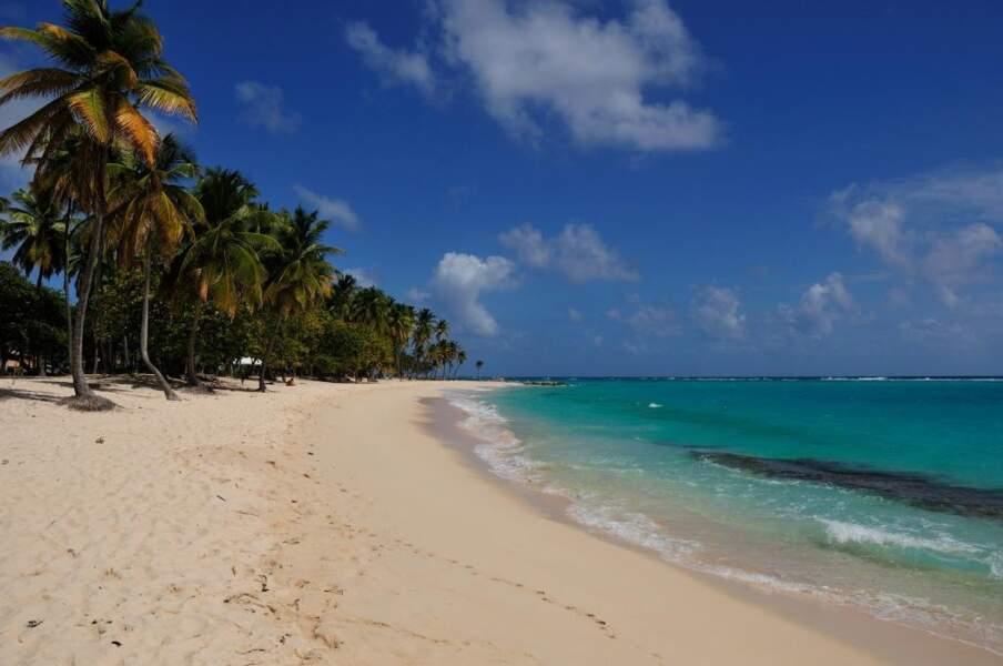 Photo prise par Thierry Morançay sur la plage de Petite Anse (Guadeloupe)