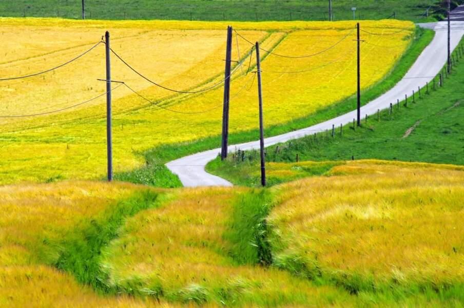 Photo prise dans la plaine de Caux (Haute-Normandie), par Jean-Yves PALFRAY