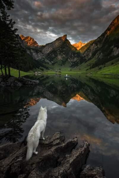 Au coeur des montagnes suisses