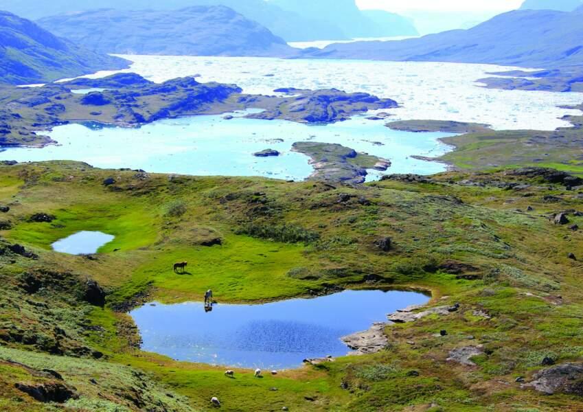 Kujataa, au Groenland
