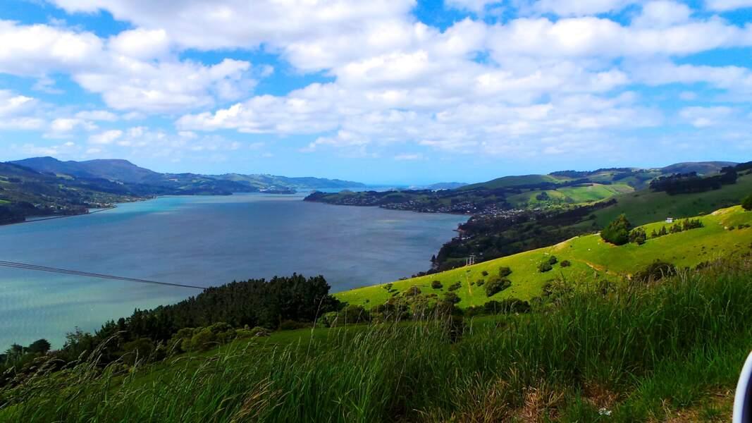 La péninsule d'Otago