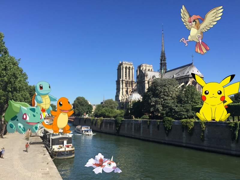 La chasse aux Pokémon est ouverte