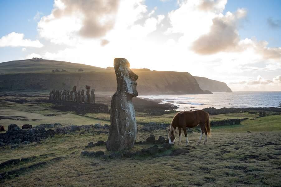 """Le moai """"voyageur"""""""
