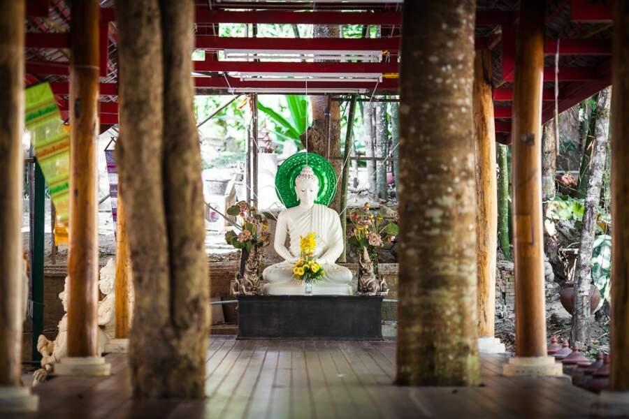 Bouddha serein
