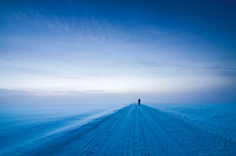 Région de Kanta-Häme, Finlande : grand blanc à l'heure bleue