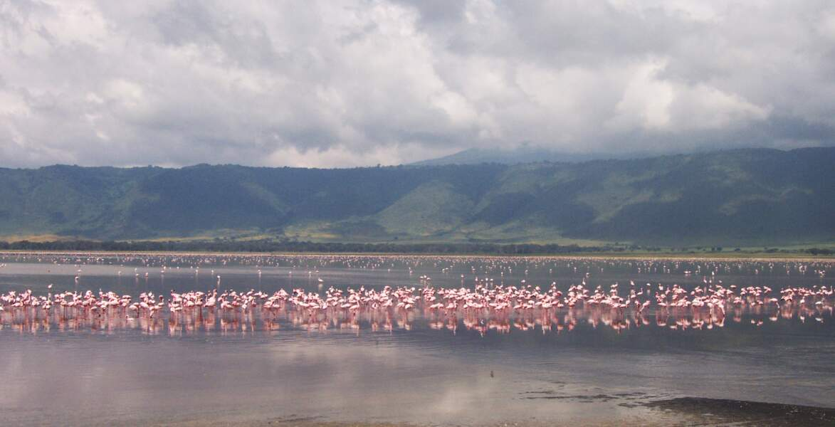 3e destination: le parc naturel de N'Gorongoro en Tanzanie
