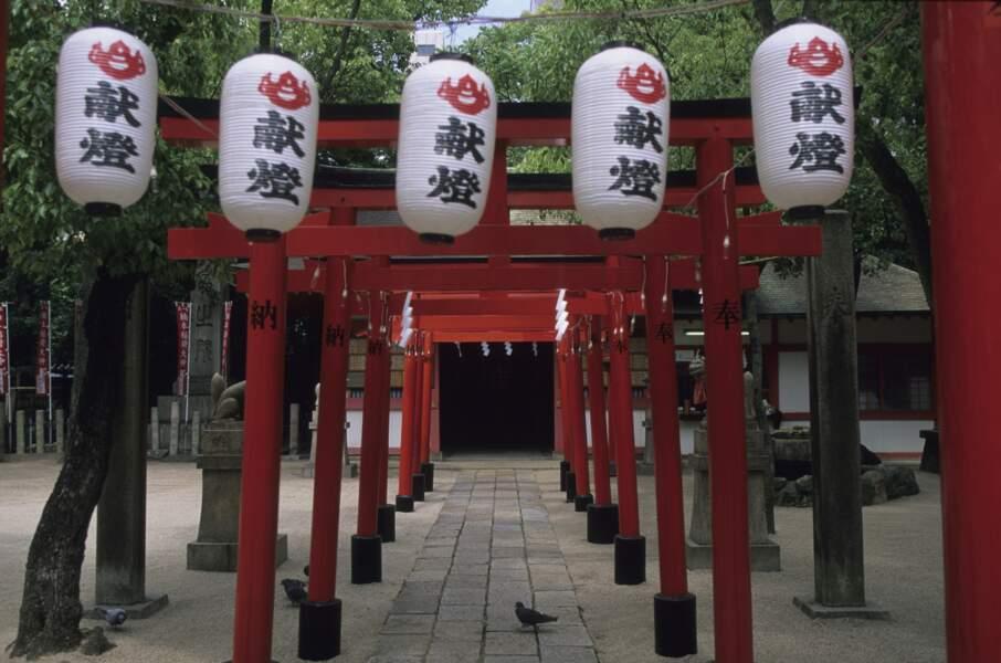 Kobe, l'empire du boeuf et du saké