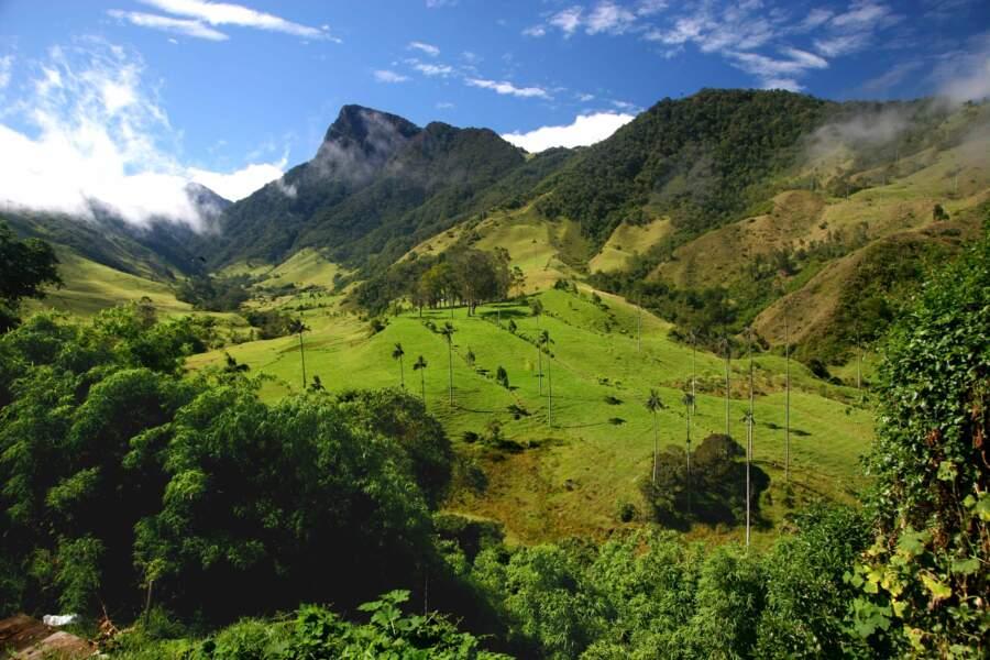 COLOMBIE : un réveil de toute beauté