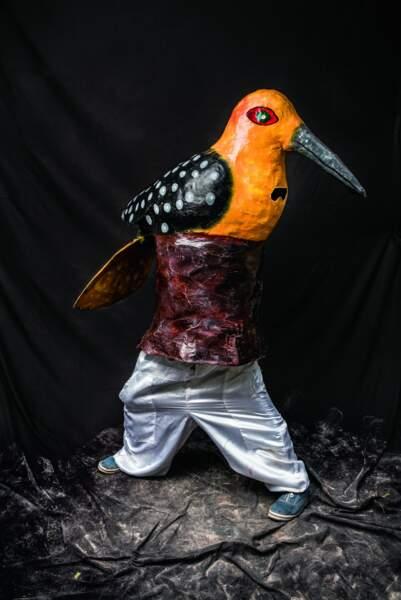 Oiseau bariolé