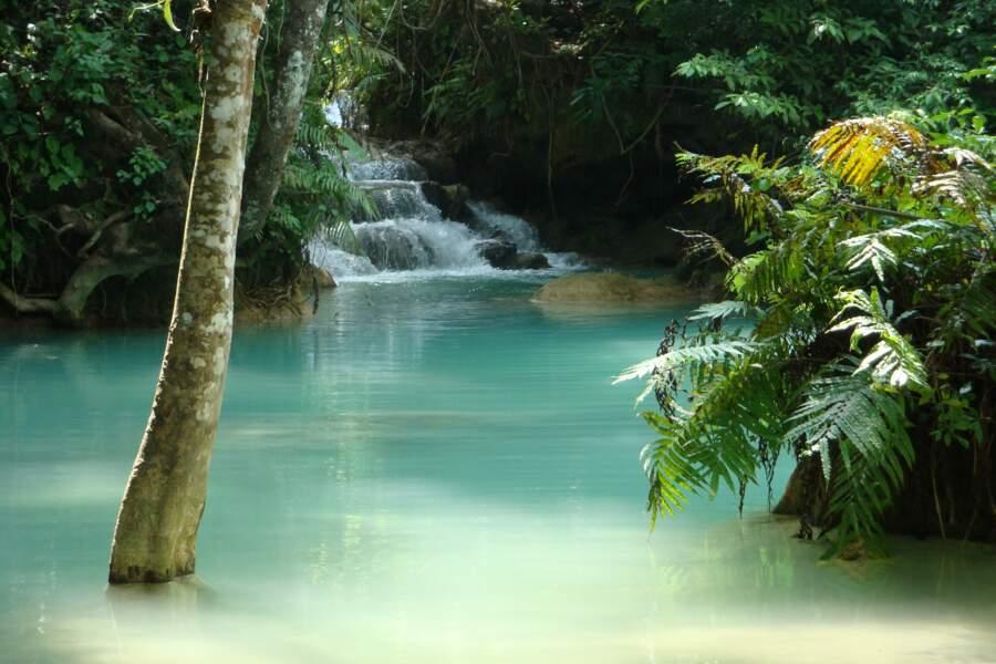 Les chutes de Kuang Si, au Laos, s'étalent sur plusieurs niveaux dans un espace naturel superbe