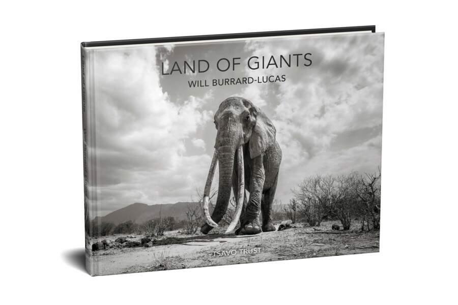 """""""Land of Giants"""""""