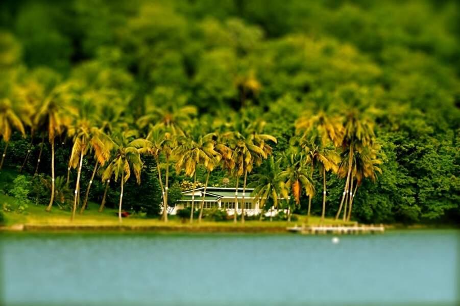Photo prise par Adrien Dubuisson sur les Tobago Cays (Saint-Vincent-et-les-Grenadines)